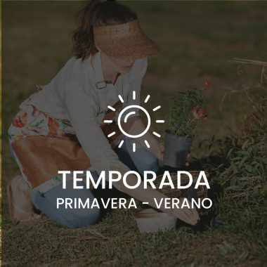 TEMPORADA PRIMAVERA-VERANO
